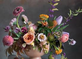 欣赏一组唯美好看的花艺摄影作品