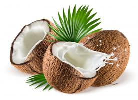 白如玉芳香滑脆的椰子图片