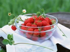 超诱人红彤彤的草莓图片欣赏