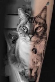 写实的一组宠物猫狗纹身作品图片