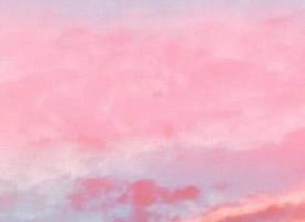 一组少女心爆棚的粉色壁纸无水印背景图