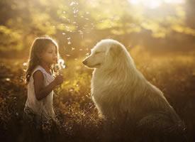 一组孩子与动物的温暖瞬间
