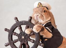 可爱的兔几PuiPui,活得可真精致