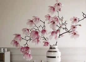 一组意境美的粉色花朵图片欣赏