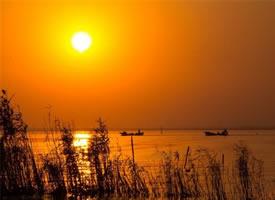 阳澄湖的夕阳真是美轮美奂啊