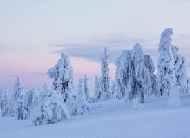 一组唯美的雪景高清图片欣赏