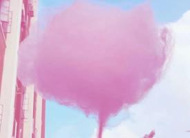 一组少女心十足的粉色壁纸图片