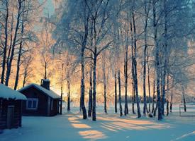 精选唯美冬季雪景图片桌面壁纸