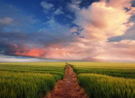 幽静的乡间小道风景桌面壁纸