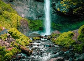 森林溪流美景图片桌面壁纸