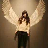 带天使翅膀的女生 相伴走过两年时光的人.