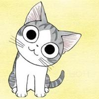可爱的猫咪看过来