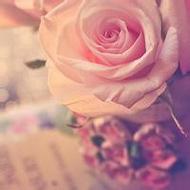 清新美丽的花朵唯美意境qq头像图片