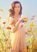 凯蒂·佩里花海写真 蝴蝶环绕唯美梦幻