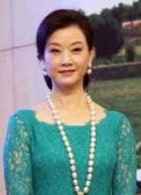 宋祖英出席慈善活动 珠光宝气显高贵优雅