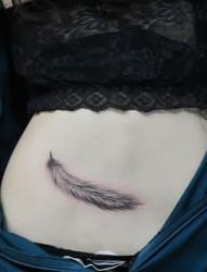女人腹部性感的羽毛刺青