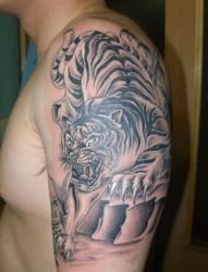 个性的下山虎手臂刺青