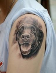 手臂上狗狗纹身