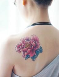 漂亮的牡丹花刺青 牡丹花刺青手稿