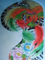 凤凰纹身图片:彩色半甲凤凰纹身图片纹身作品