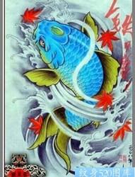 多张经典的鲤鱼纹身图案手稿供大家欣赏