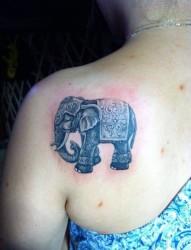 小象女性后背纹身