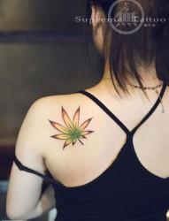 女生小清新枫叶后背纹身
