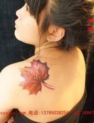 美女左后肩上的漂亮枫叶刺青