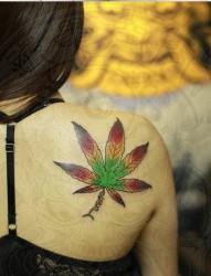 女人背部漂亮精美的叶子纹身图片