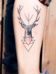腿部小鹿图案个性纹身