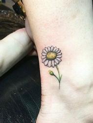简单好看的小雏菊图案纹身