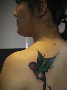 一只活灵活现的小燕子纹身非常可爱