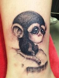 裸脚上的大眼睛萌猴子纹身特别可爱