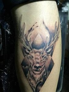 个性鹿头腿部纹身图片时尚大方