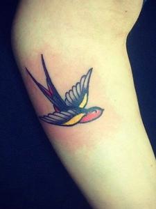 一组美丽可爱动人的小燕子纹身图片