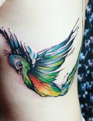 飞落在女生肌肤上的五彩小鸟个性图案纹身