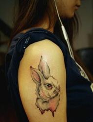 女生大臂上的小白兔纹身可爱极了