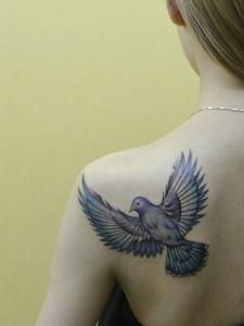 一直鸽子纹身图片落在女生肩膀上