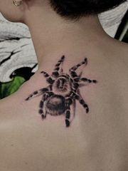 肩部逼真写实的蜘蛛纹身