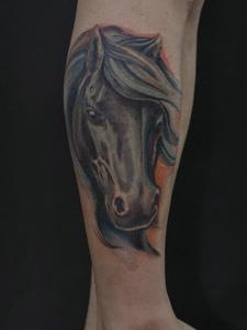 包小腿一匹骏马纹身刺青帅气十足