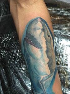 一款小孩特别喜欢的手臂海豚纹身图案