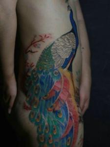 侧腰部骄傲自我的彩色孔雀纹身图案