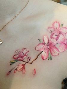 女神胸前唯美小樱花纹身图案
