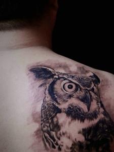 男士后背一只猫头鹰纹身图案