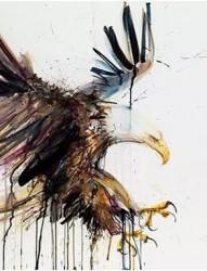 展翅高飞的雄鹰纹身手稿集