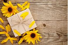 木板上的太阳花图片素材