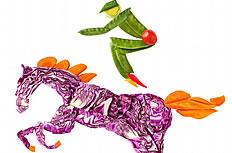 骑马另类蔬菜图片素材