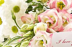 玫瑰花束图片