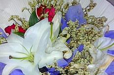 百合花束图片