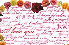 浪漫心形玫瑰花图片